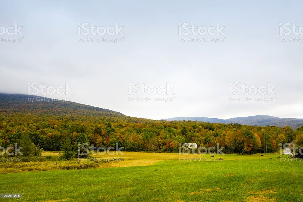 Farm House In The Woods royalty-free stock photo