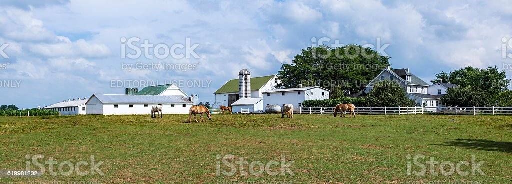 farm house field et silo - Photo