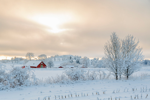 istock Farm in a rural winter landscape with snow and frost 880852228