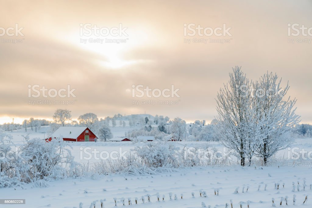 Farm in a rural winter landscape with snow and frost stock photo