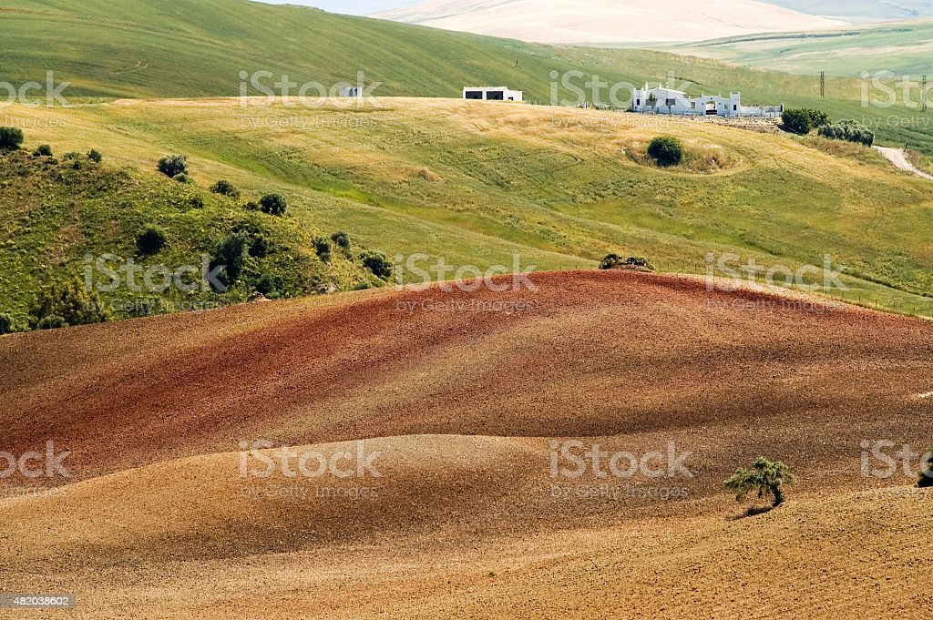 Farm in Andalusian agricultural landscape, rolling hills, wheatfields, Andalusia, Spain stock photo