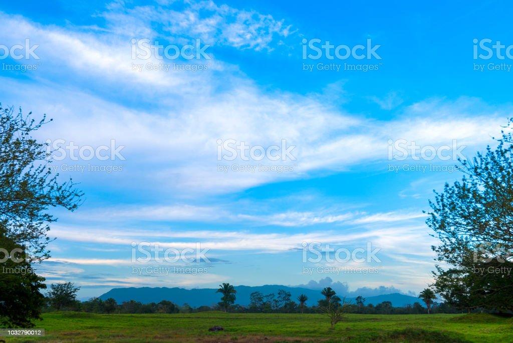 Farm in Izabal Guatemala, cattle pasture.