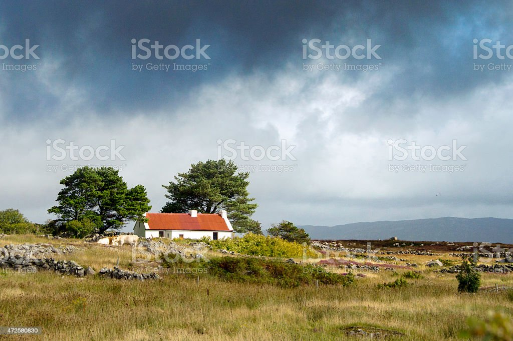Farm in the Burren nature reserve, Ireland stock photo