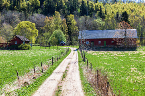Farm in the countryside at spring