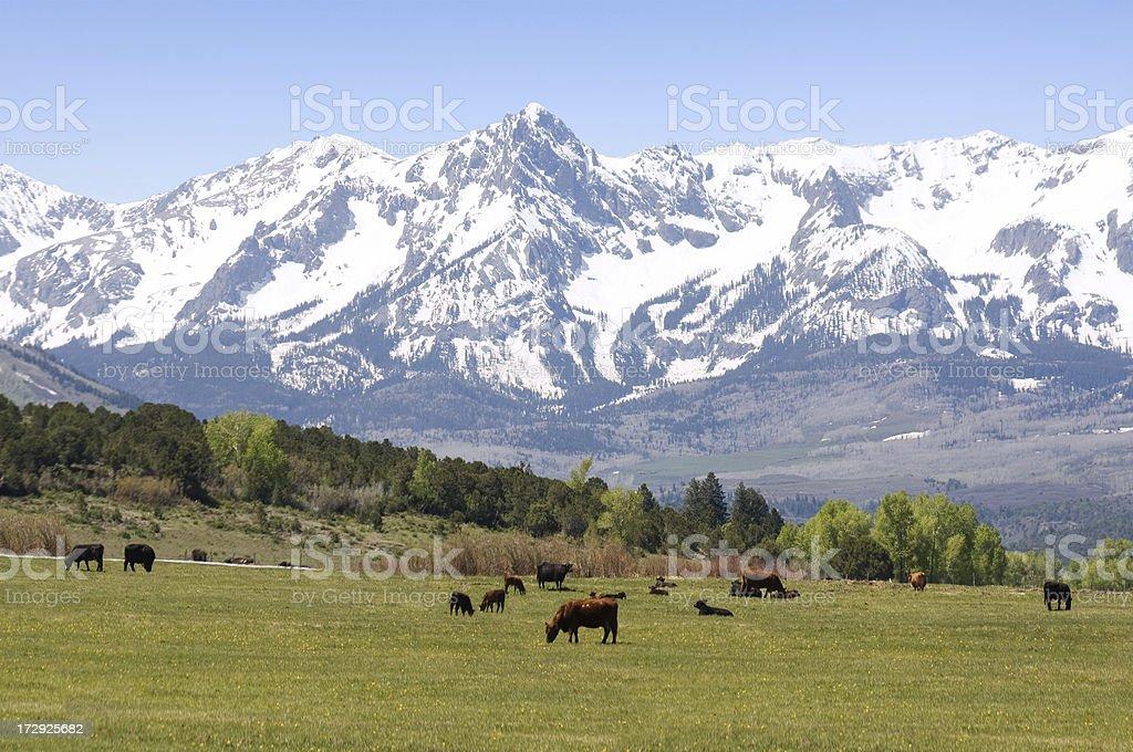 Farm in the Rocky Mountains stock photo