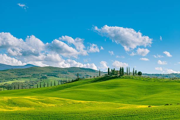 Farm in Tuscan hills stock photo