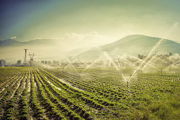 farm irrigation automatic irrigation at a farm irrigation equipment stock pictures, royalty-free photos & images