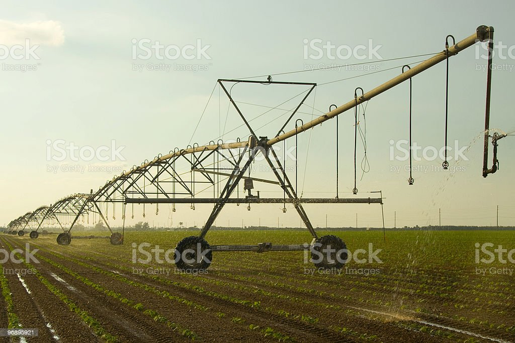 Farm irrigation royalty-free stock photo