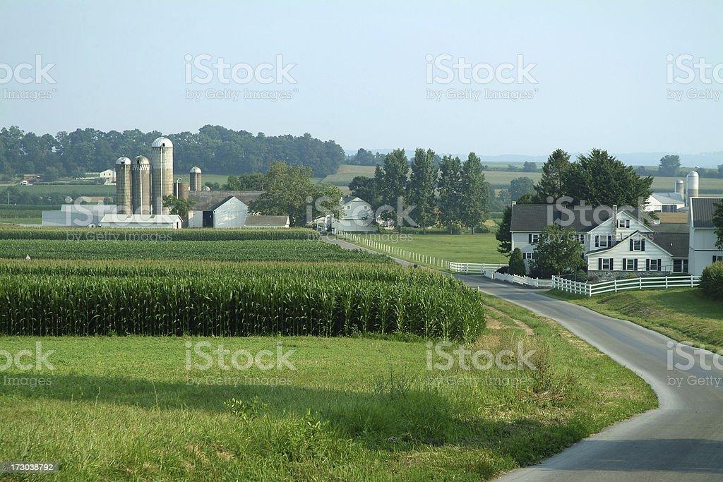 Farm Land 1 stock photo