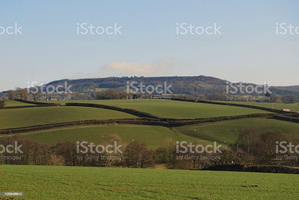 Farm land and fields in Somerset, UK stock photo