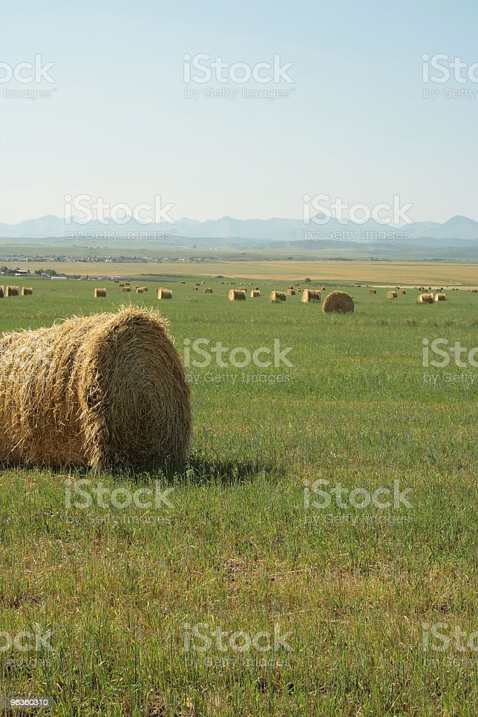 farm land round bales rocky mountain range royalty-free stock photo