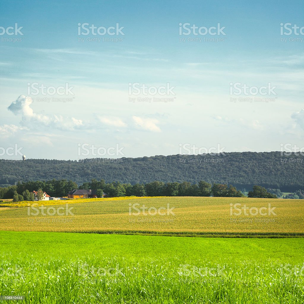 Farm landscape royalty-free stock photo