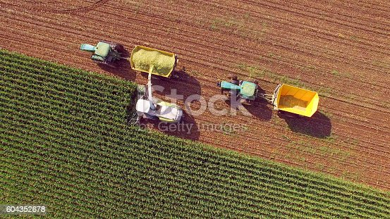 istock Farm machines harvesting corn for feed or ethanol 604352678