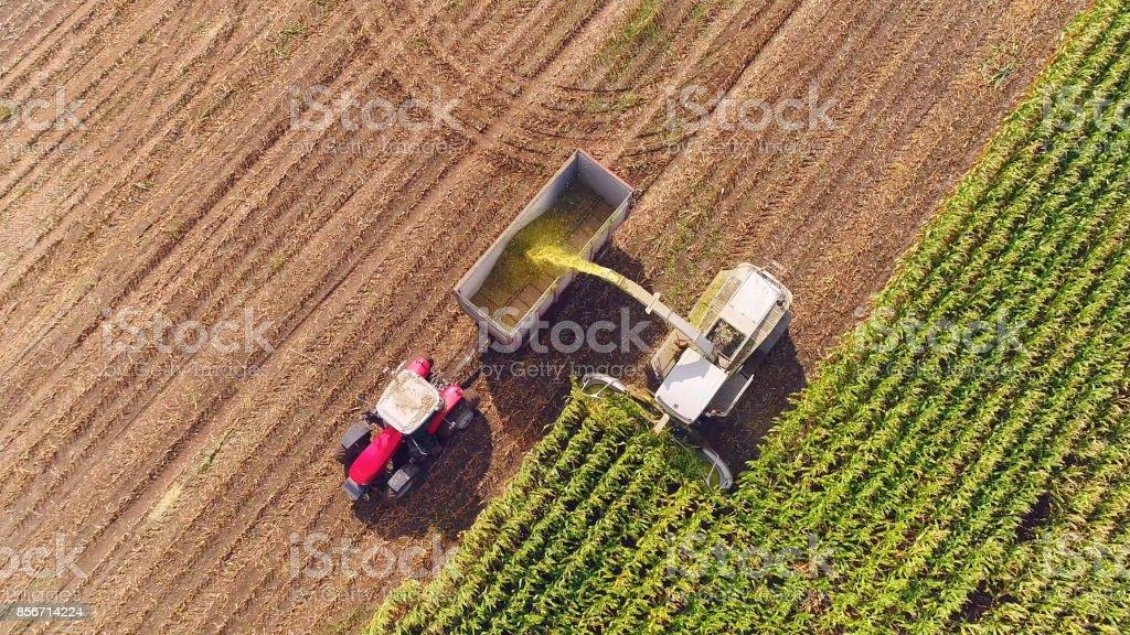 Farm machines harvesting corn in Autumn, aerial view stock photo