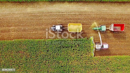 istock Farm machines harvesting corn in September, viewed from above 609035672