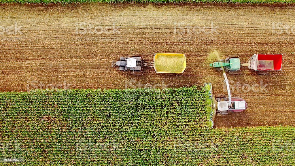 Farm machines harvesting corn in September, viewed from above - foto de stock