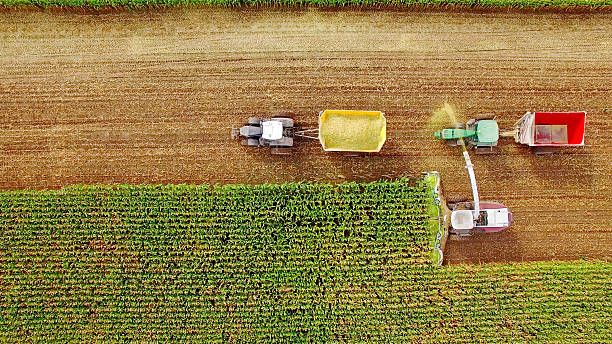 Farm machines harvesting corn in September, viewed from above stock photo
