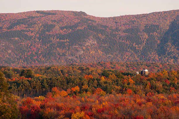 Ferme du Vermont est entouré de forêt en automne - Photo