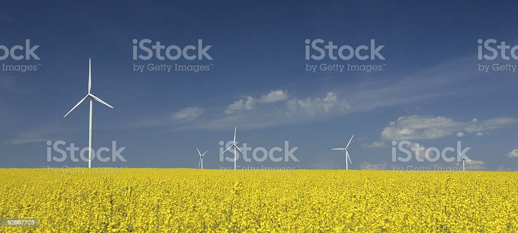 farm of windturbines close to rape field royalty-free stock photo