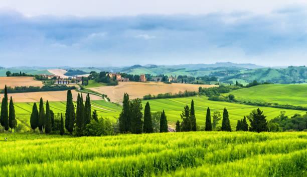 Farm on curvy hills in Tuscany stock photo