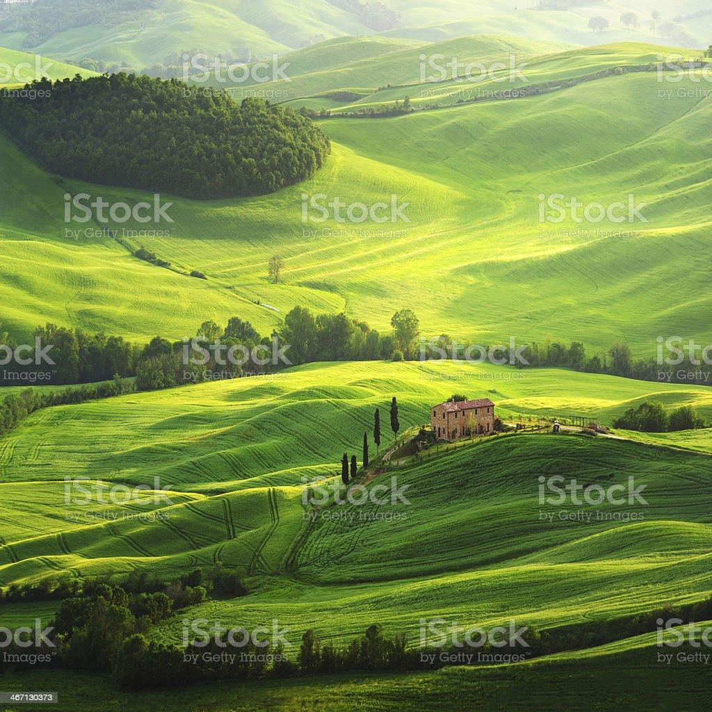 Farm on green field in Tuscany