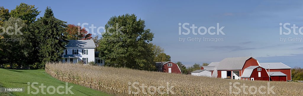 Farm Panorama in Autumn stock photo