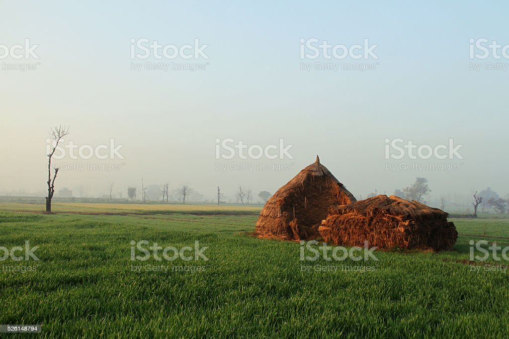 farm Photography stock photo