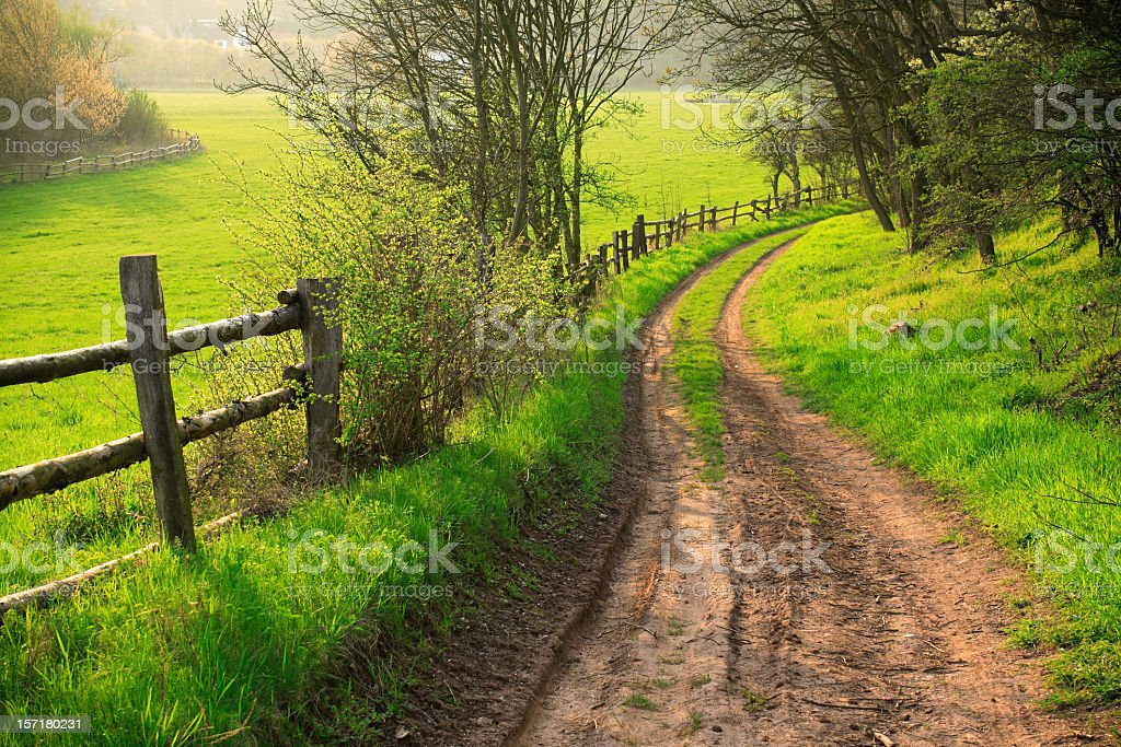 Farm Road in Spring II royalty-free stock photo