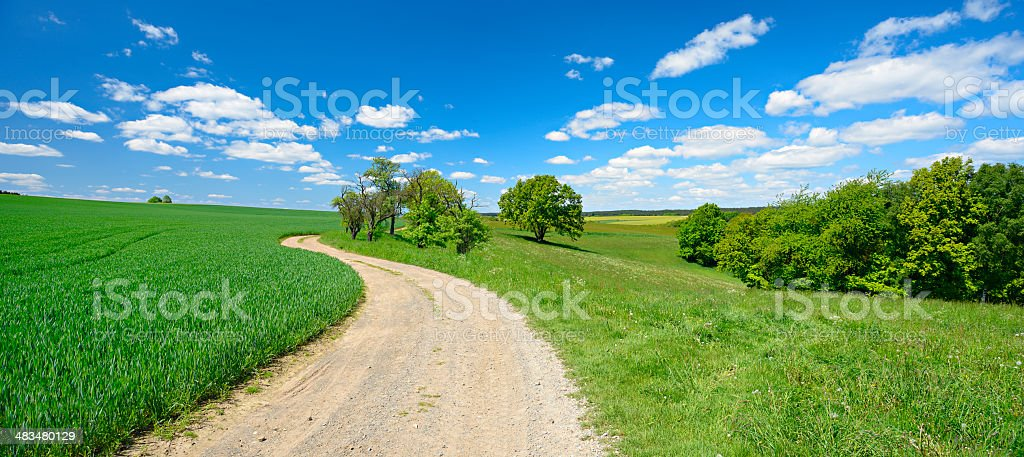 Farm Road through Green Fields in Spring Landscape stock photo