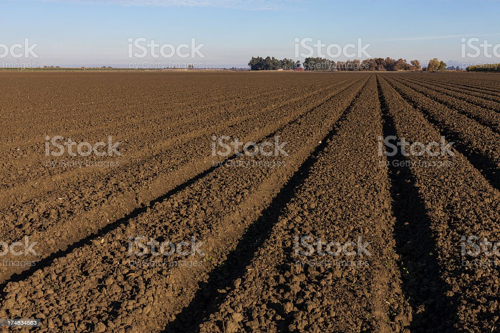 Farm rows of fresh soil dirt in empty field royalty-free stock photo