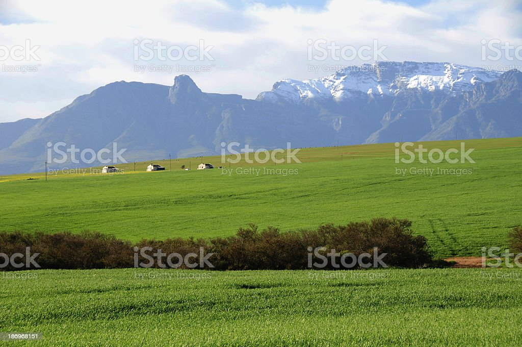 Farm scene in the Overberg - South Africa stock photo