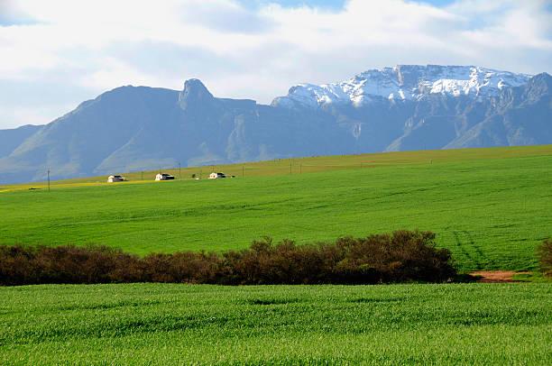 Farm scene in the Overberg - South Africa stock photo