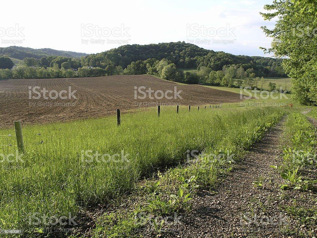 Farm scene royalty-free stock photo