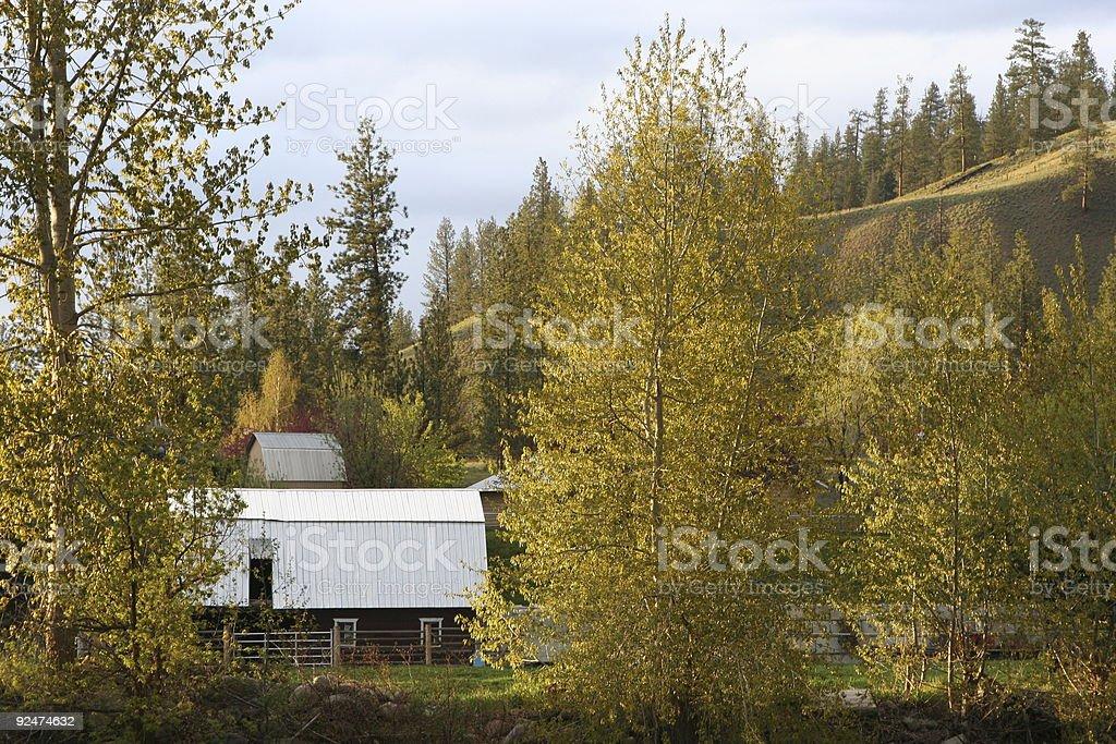 Farm Scenic royalty-free stock photo