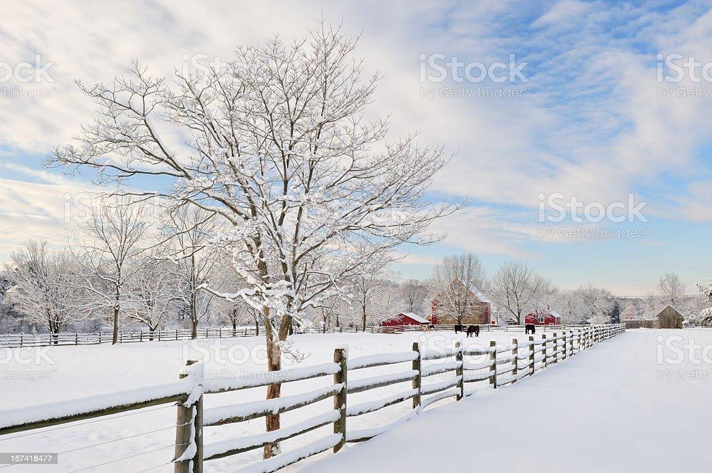 Farm Scenics in Winter stock photo