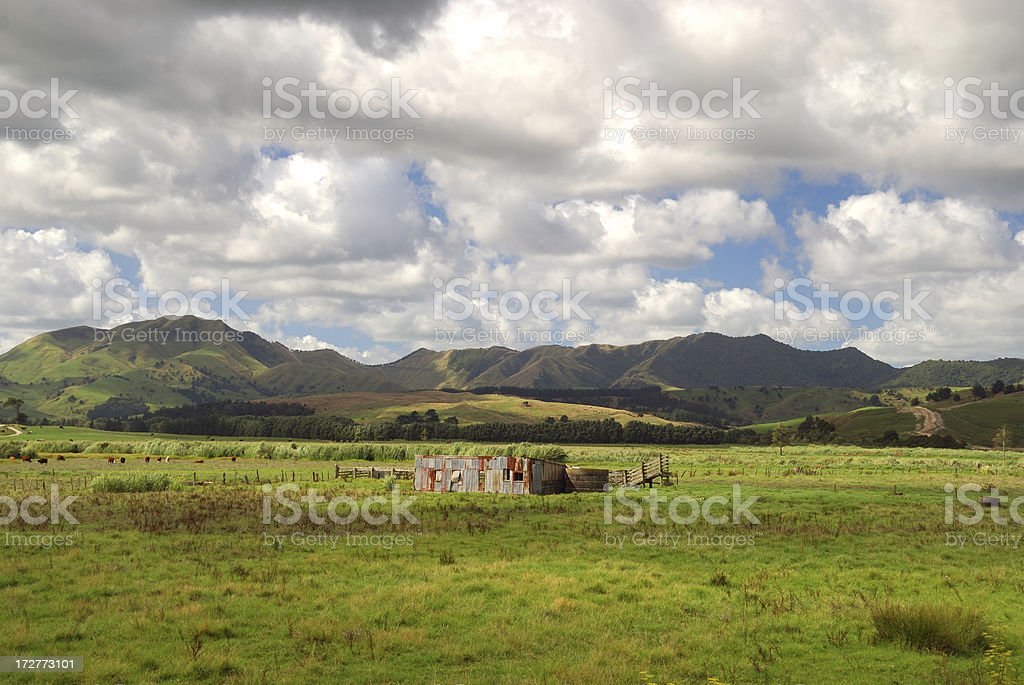 Farm shed NZ royalty-free stock photo