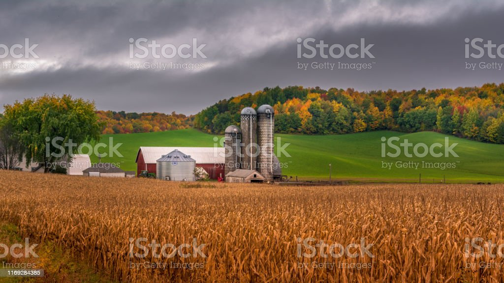 farm silo during fall with background colors farm silo during fall with background colors Agricultural Field Stock Photo