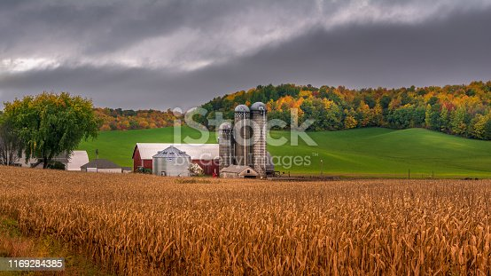 farm silo during fall with background colors