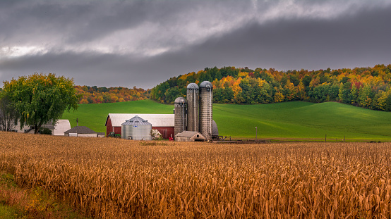 Farm Silo During Fall With Background Colors Stock Photo - Download Image Now