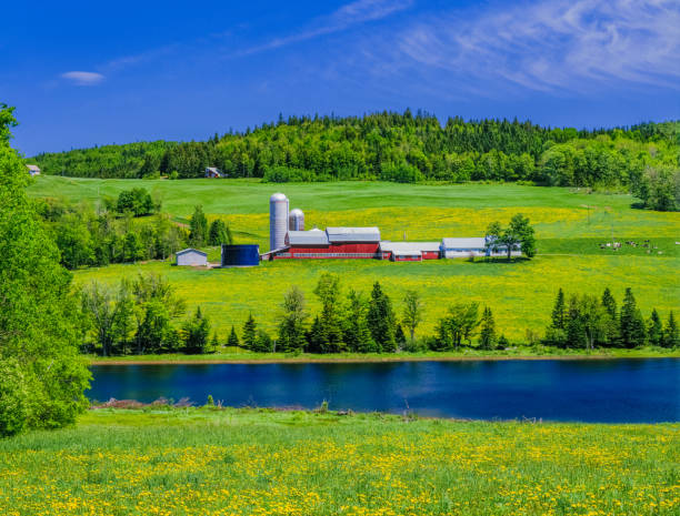 Farm springtime in the rolling hills of the Green Mountains, Vermont stock photo