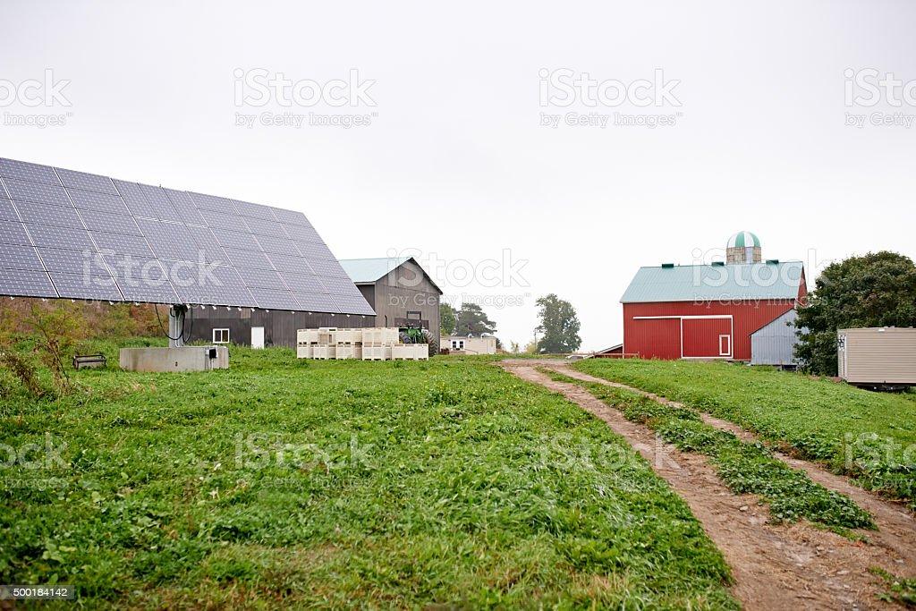 Farm sweet farm stock photo