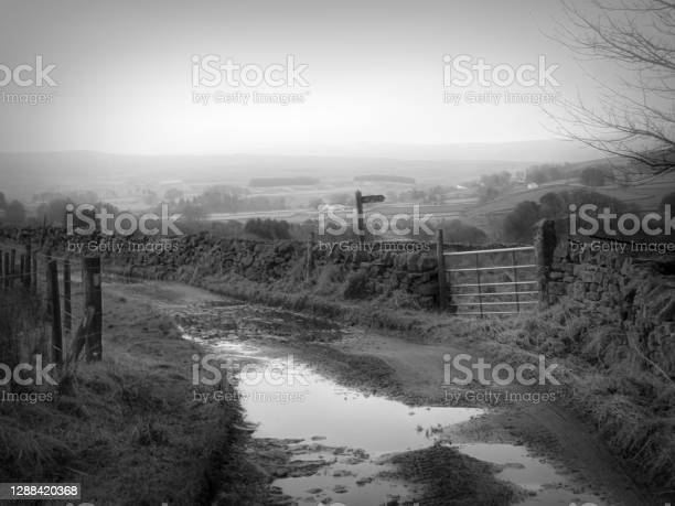 Farm Track With Pot Holes In Alston Cumbria Stock Photo - Download Image Now