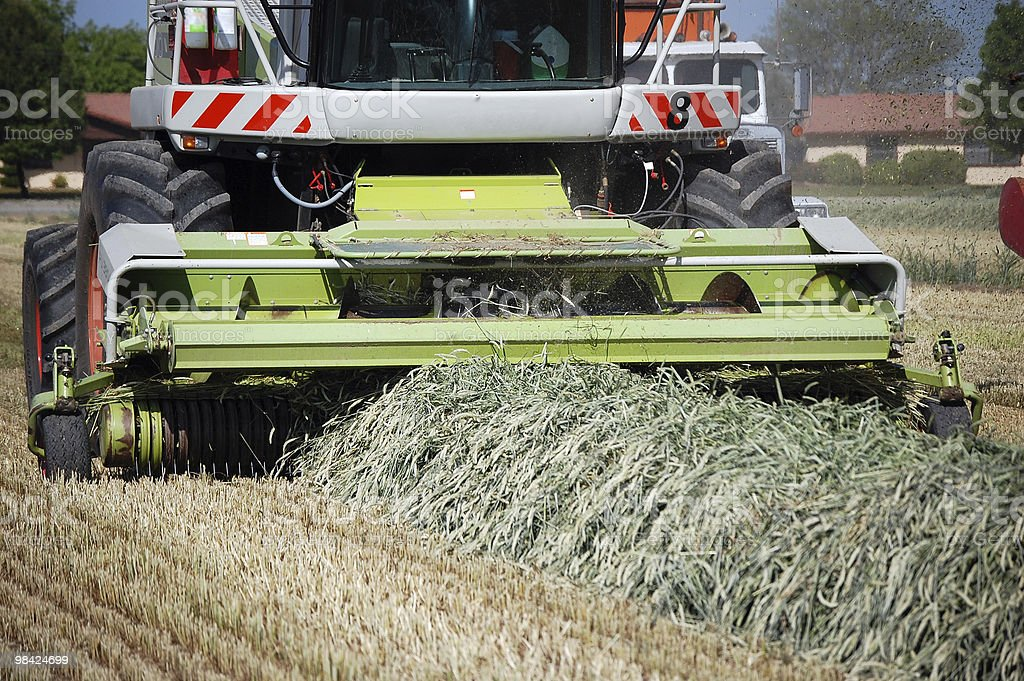 Farm Tractor Gathering Cut Hay Silage royalty-free stock photo