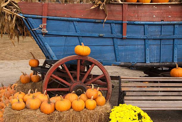 Farm Wagon and Pumpkins stock photo