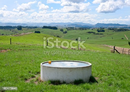 Fresh water for cows at a dairy farm on New Zealand's North Island.