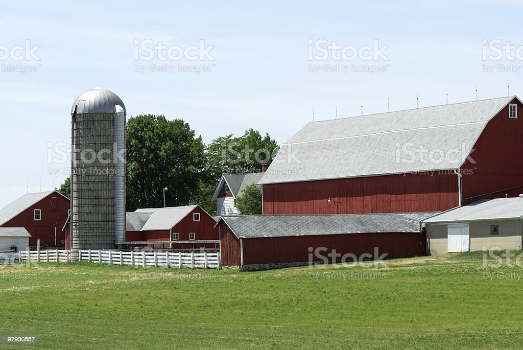 Farm with Green Grass royalty-free stock photo