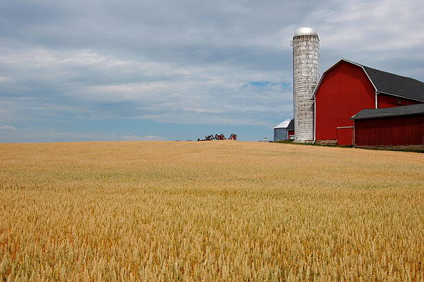 Farm with red barn and blue sky