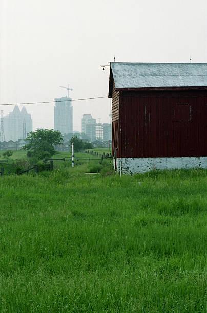 Farm within City stock photo
