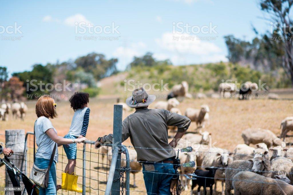 Landarbeiter zeigt die Farm zu einer Familie – Foto