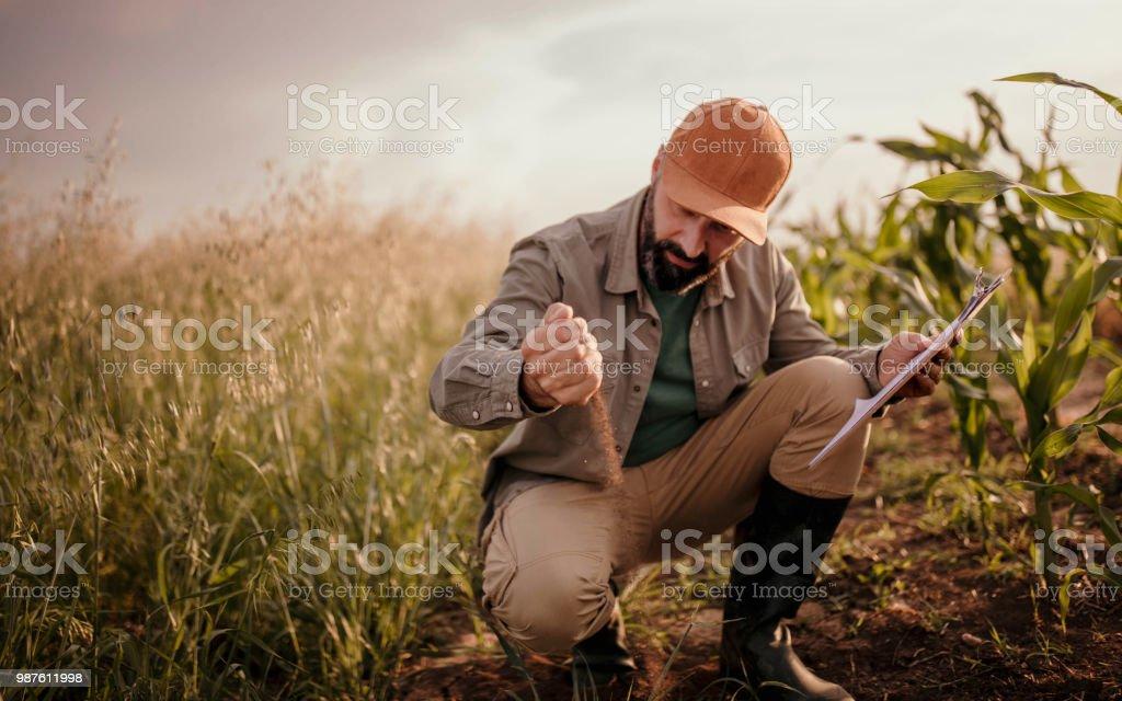 Landwirt analysiert sein land – Foto